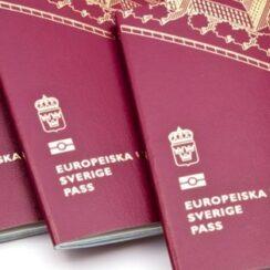 svensk pass bild