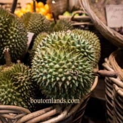 durian i Thailand
